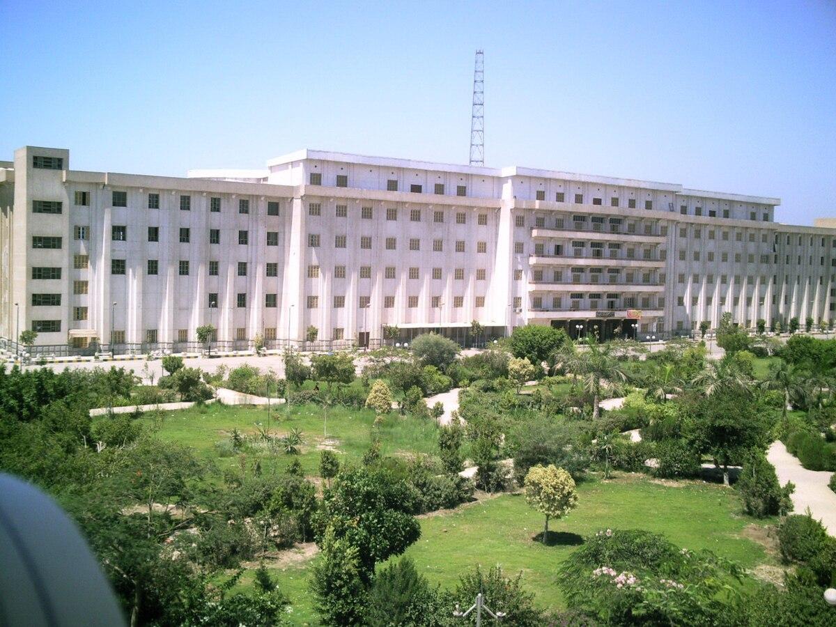 جامعة بنى سويف ويكيبيديا