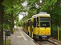 Berliner Linie 61 - Endstation - geo.hlipp.de - 38499.jpg