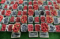 Berries at Arles Market.jpg