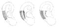 Bertillon - Identification anthropométrique (1893) 061.3 n&b.png