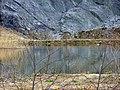 Biotop im Steinbruch - panoramio.jpg