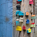 Bird Houses 20071230.10D.46705 SML.jpg