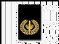 Birgadier.png