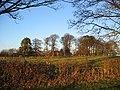 Bishop Burton - SE - geograph.org.uk - 97620.jpg