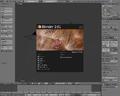 Blender 2.61-startup.png