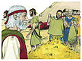 Book of Exodus Chapter 36-3 (Bible Illustrations by Sweet Media).jpg