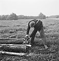 Bosbewerking, arbeiders, boomstammen, werkzaamheden, gereedschappen, Bestanddeelnr 253-5979.jpg