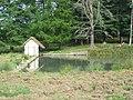 Boutissaint-plan d'eau de Sainte-Langueur--28-08-17.jpg