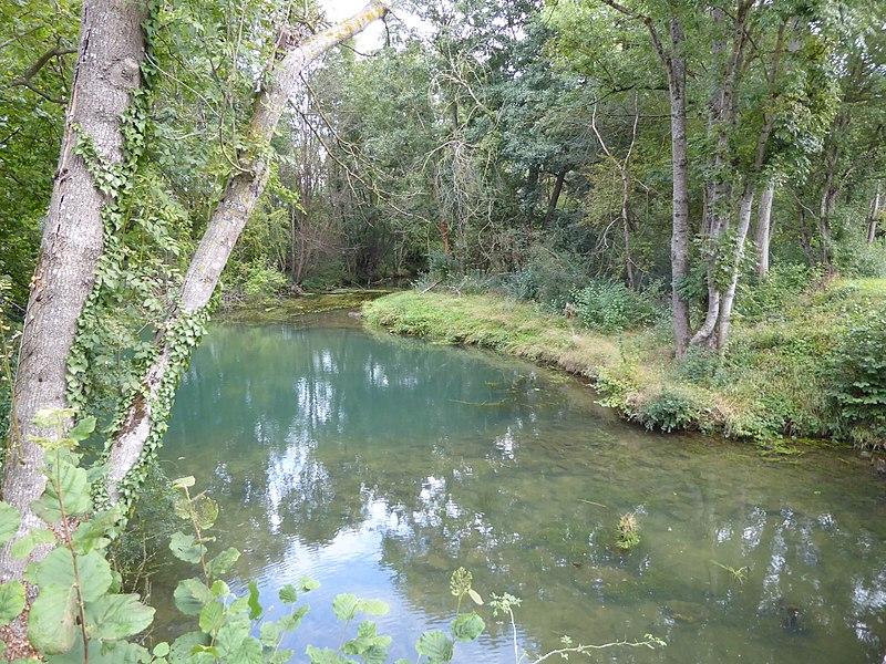 Confluent de la Bouvade (premier plan) avec le Chaudeau (arrière plan en face).