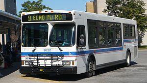 Brantford Transit - Image: Brantford Transit 9022