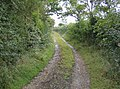 Bridleway from Newtown - geograph.org.uk - 580490.jpg