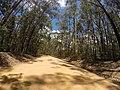 Brooman NSW 2538, Australia - panoramio (107).jpg