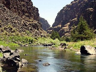 Bruneau River river in the United States of America