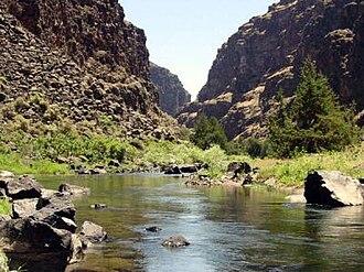 Bruneau River - Bruneau River in Idaho