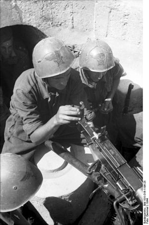 Fiat–Revelli Modello 1935 - Italian soldiers aiming a Fiat-Revelli 35.