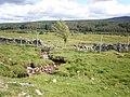 Burn going to River Moriston across pasture near Tomchrasky - geograph.org.uk - 1350230.jpg