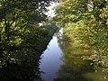 Burstwick Drain - geograph.org.uk - 274416.jpg