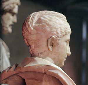 Faustina the Elder - Bust of Faustina in the Musei Capitolini (side view; note the distinctive hairstyle)