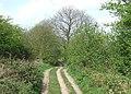 Byway, near Upper Farmcote, Shropshire - geograph.org.uk - 407211.jpg