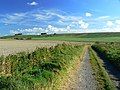Byway to Hackpen Hill, near Winterbourne Bassett - geograph.org.uk - 1010205.jpg