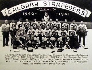 Calgary Stampeders (ice hockey)