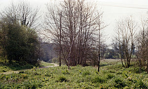 Calne railway station - Probable site of trackbed near Calne station, 1989