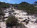 Caminho de Pedras na Trilha da Cachoeira da Fumaça (Chapada Diamantina).jpg