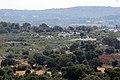 Campagna tra Locorotondo e Martina Franca - panoramio.jpg