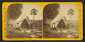 Camping out in Florida - The tent, by Styles, A. F., 1832-1910.png