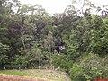Cascata vista na Rodovia Candido Portinari sentido Franca Km-386 - panoramio.jpg