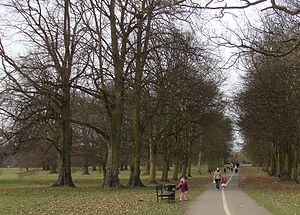 Cassiobury House - The public park today