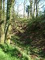 Castle Rings, Donhead St Mary 02.JPG