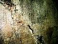 Cave-of-eliauh 01.jpg