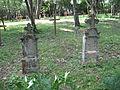 Cemetery in Derenk, Hungary, 2012.JPG