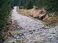 Cesta podél Jizerky.jpg