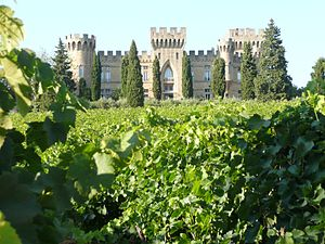 A wine estate in the French wine region of Cha...