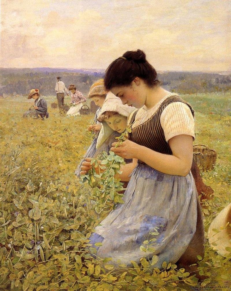Чарльз Спрэйг Пирс - Женщины в Fields.jpg