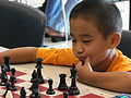 Chess-Player-6786.jpg