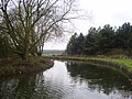 Chesterfield canal. - geograph.org.uk - 1777933.jpg