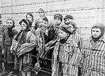 Child survivors of Auschwitz.jpeg