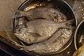 Chinese Food Fish.jpg