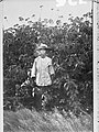 Chinese gardener with crop of Arnalto Rye plant, Northern Territory(GN00725).jpg