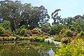 Christchurch Botanic Gardens kz14.jpg