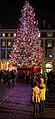 Christmas Tree (8282062136).jpg