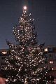 Christmas Tree Sylvester Park, Olympia WA 2007 - panoramio.jpg