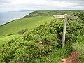 Coast path above Babbacombe Cliff - geograph.org.uk - 1442469.jpg