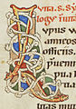 Codex Bodmer 127 223v Detail.jpg