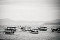 Colônia dos Pescadores.jpg