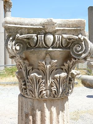 Remains of the capital of a Corinthian column....