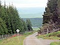 Corner of forest - geograph.org.uk - 493034.jpg